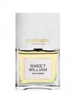 Carner Barcelona Sweet William