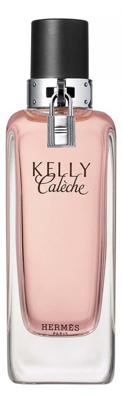 Hermes Kelly Caleche